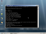 Testing network on ReactOS