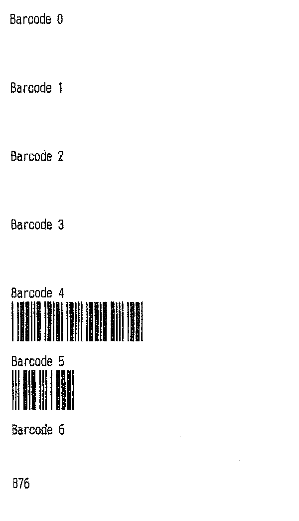 Barcoded receipt example